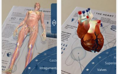 Understanding Anatomy 4D – Augmented Reality